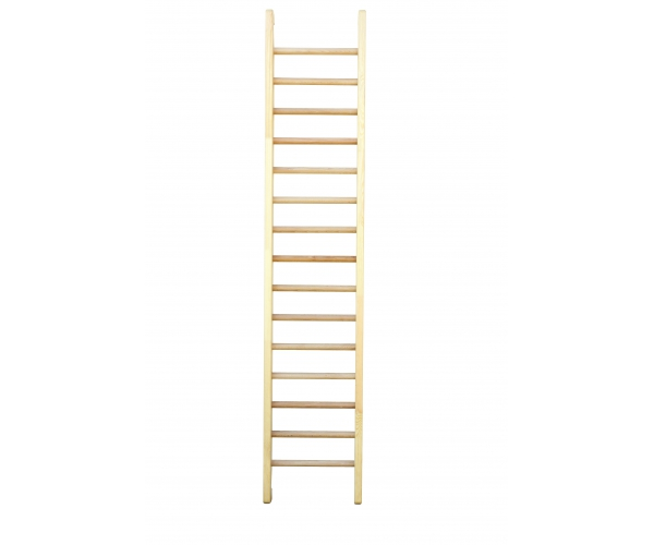 Gym Ladder