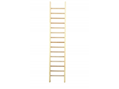 Gym Ladder